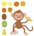 Monkey with banana and fruit set vector image
