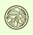 olive branch icon in stylized round frame vector image vector image