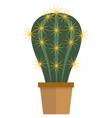 potted flower cactus succulent plant flat vector image vector image