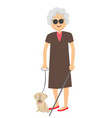 senior blind woman standing with guide dog vector image vector image