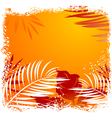 Beautiful tropical frame vector image vector image