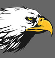 Eagle Face Side View Cartoon vector image vector image