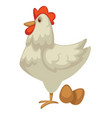 hen and eggs farm chicken dairy product and vector image