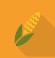 maize corn flat icon colorful logo vector image vector image