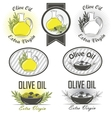 Olive oil labels and design elements vector image vector image