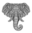 stylized ethnic boho elephant portrait isolated on vector image