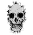 stylized skull vector image vector image