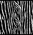 tiger or zebra seamless pattern grunge animal vector image