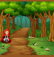 women red hooded at the forest vector image vector image