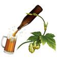 beer mug hop bottle vector image