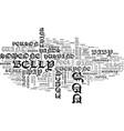 bellyhands text word cloud concept vector image vector image