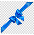 blue bow with diagonally ribbon vector image vector image