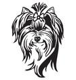 decorative portrait dog yorkshire terrier vector image vector image