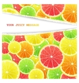 Fruity slices citrus background vector image vector image