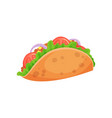 mexican taco with meat and fresh vegetables vector image