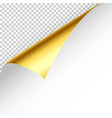 realistic golden curled page corner with shadow on vector image