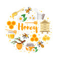 round composition of honey vector image vector image