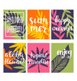summer card templates collection vector image
