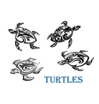 Swimming turtles set vector image
