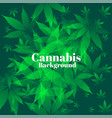 green cannabis leaves in bunch background design vector image vector image