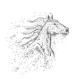 horse head particle vector image vector image