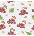 Image of seamless pattern with berries and autumn vector image