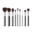 make up brushes vector image vector image