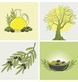 set of four banners on the theme of olives and oil vector image vector image