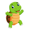 a cute turtle character cartoon vector image