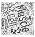 Bones and Back Pain text background wordcloud vector image vector image