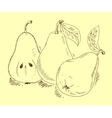 Pears sketch vector image vector image