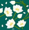 white indian lotus on indigo green teal vector image