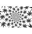 cannabis plant background vector image
