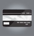 cash card vector image vector image