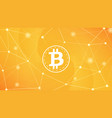 digital money bitcoin on the network background vector image vector image