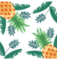 pineapple tropical fruits foliage background vector image vector image