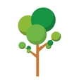 Tree icon Plant and nature design graphic vector image vector image