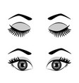 silhouette of eyes and eyebrow open and closed vector image