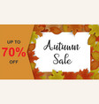 autumn sale background decor with autumn maple vector image vector image