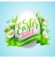 Easter sale background with eggs and spring flower vector image vector image
