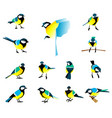 flat icons of titmouse set winter birds in a flat vector image vector image
