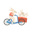 rabbit mom with kids riding bicycle flat vector image vector image