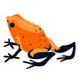 red frog icon cartoon style vector image