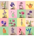 Seamless pattern with growing flowers in pots vector image vector image