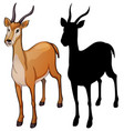 set of gazelle design vector image