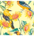 Sunflowers and oriole pattern watercolor vector image vector image