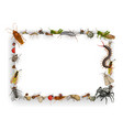 frame with insects cartoon parasites border vector image vector image