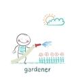 gardener waters the flowers vector image vector image