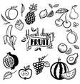hand drawn fruits set cherry avocado orange vector image