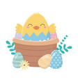 happy easter day chicken in eggshell basket eggs vector image vector image